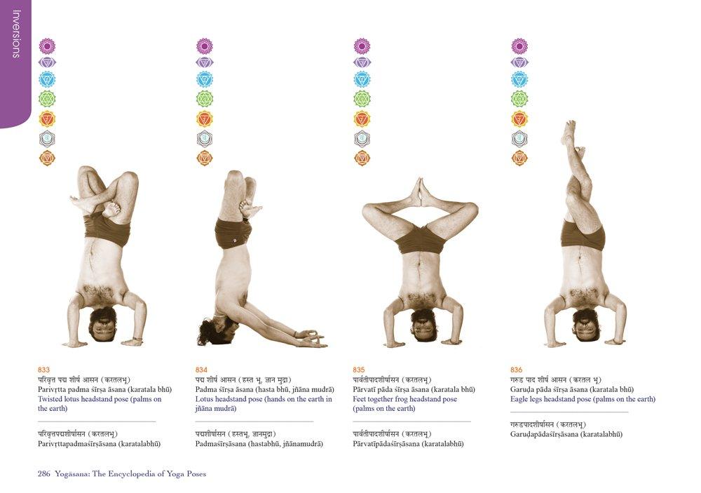 Yogasana: The Encyclopedia of Yoga Poses: Amazon.es ...