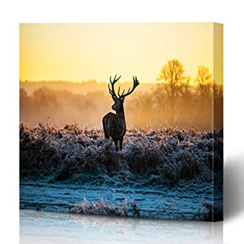 Foggy Lake With Stag Canvas Print Wall Art