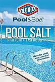 40lb salt - CLOROX Pool&Spa 40B-CLXPOOL Premium Pool Salt, 40lb