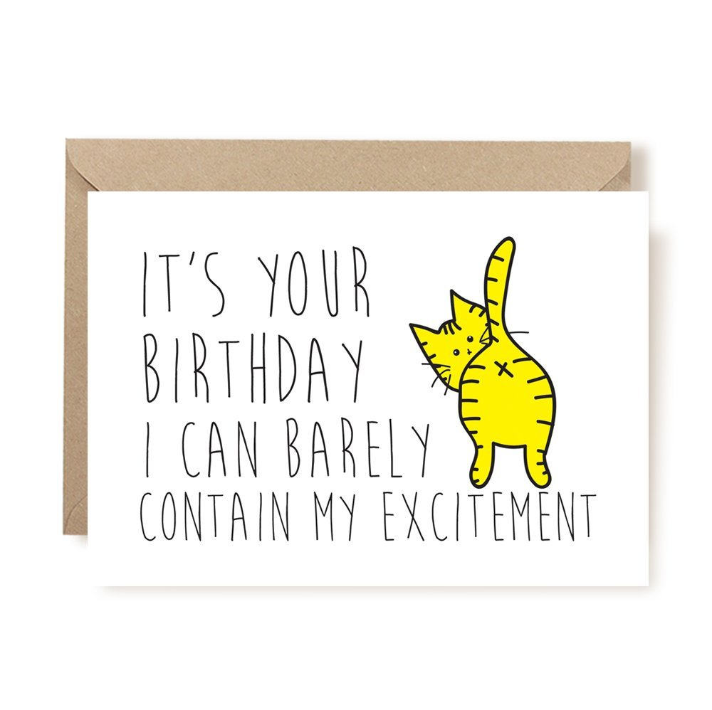 Cat Birthday Card From Pet Pet Birthday Funny Birthday Card Funny Card Funny Birthday Card Cat Birthday Card I Can Barely Contain My Excitement