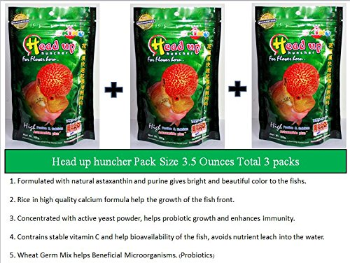 Okiko Headup Huncher Flowerhorn Fish Food (3.5 Ounces (100 g) , Pellets Size M Total 3 packs . From Thailand) Very High Protein & (Catfish Dog Costume)