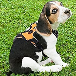 Rabbitgoo Dog Harness No-Pull Pet Harness Adjustable Outdoor Pet Vest 3M Reflective Oxford Material Vest for Dogs Easy Control for Small Medium Large Dogs (Orange, L)