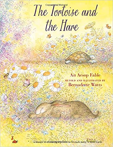 The Tortoise and the Hare: Bernadette Watts: 9780735842076: Amazon ...