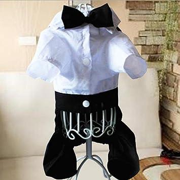 WYXIN Perro de perro de la boda vestido de peluche de perro traje de pantalones ropa