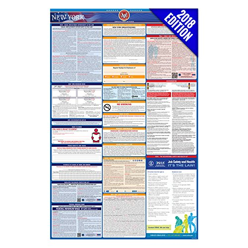 New York Small Poster (2018 New York Labor Law Poster – State & Federal Compliant – Laminated)