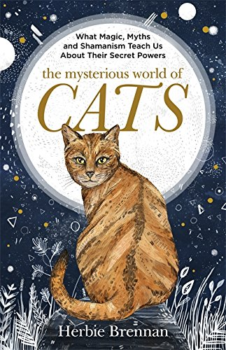 The Mysterious World of Cats: The ultimate gift book for people who are bonkers about their cat