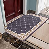 Carpet,doormat,kitchen lobby water absorbent foot mat bathroom non-slip mat-C 140x200cm(55x79inch)