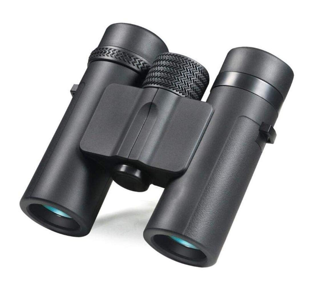 ZGQA-GQA Telescope, High Power HD Binoculars Adult Professional Low Light Night Vision Outdoor Travel Easy Carrying Fishing Camping/Hiking for Adult (Color : Black) by ZGQA-GQA