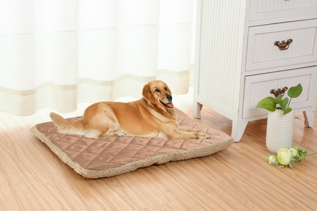 SX-ZZJ %Productos para Mascotas Pet Nest Dog Bed Cat Nest Pet Pet Productos para Mascotas -X013 Cama para Mascotas (Tamaño : XS): Amazon.es: Hogar