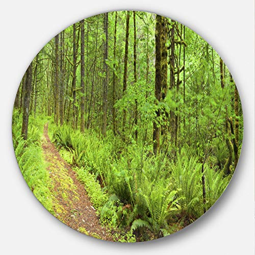 Designart MT11137-C38 Lush Forest Path Columbia River Forest Round Metal Wall Art - Disc of 38,Green,38 X 38 -  Design Art