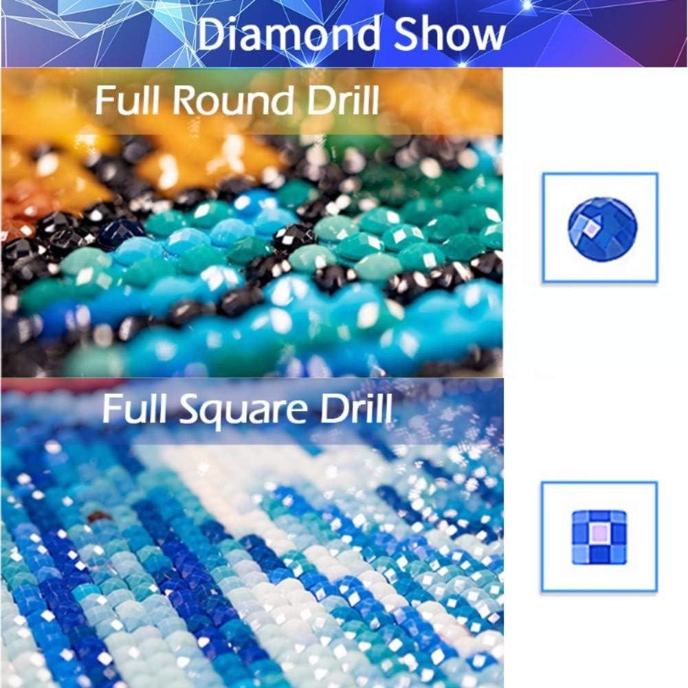 DIY 5D Diamant Peinture Bouquet de pivoine vase blanc magnifique Point De Croix Kits D/écoration Mural R/ésine Maison Strass kit Complet Arts Diamond Painting Diamant Painting F7572 Round Drill,20X20cm