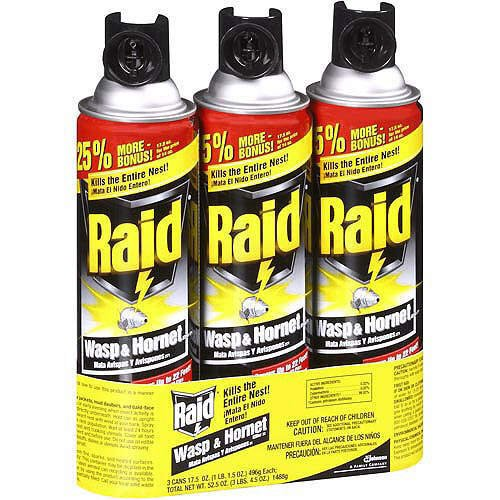 Raid Wasp & Hornet Spray 17.5 Oz - Pack of 3