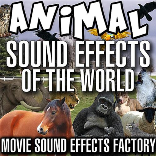 Animal Sound Effects of the World ()