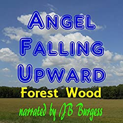 Angel Falling Upward
