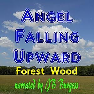 Angel Falling Upward Audiobook
