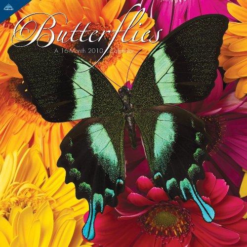 Butterflies 2010 Wall Calendar