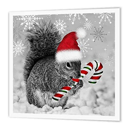 Christmas Squirrel.Amazon Com 3drose Ht 150177 2 Christmas Squirrel Candy