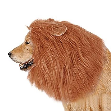 Sexyville Melena de León para disfraz de perro con regalo de Lion ...