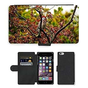 "PU LEATHER case coque housse smartphone Flip bag Cover protection // M00130215 Pájaro Paloma Árbol Lluvia de primavera // Apple iPhone 6 4.7"""