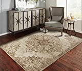 A.S Quality Rugs Distressed Rug 4x6 Rugs for Entryway and Living Room Foyer Rugs 4'x6' Clearance
