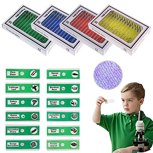 12 Prepared Microscope Slides (LAB-MRO 48 PCS Microscope Slides Plastic for Kids Biological Specimens, 4 Boxes)
