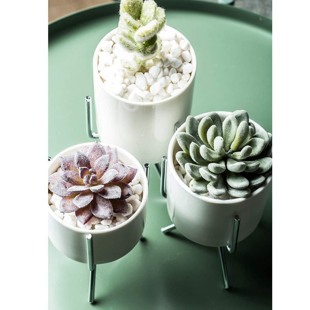 L-Gold 9.5cm Pot Homyl Classic Plant Stand Home Office Desktop Standing Rack Display Shelf with Succulent Cactus Planter Pot