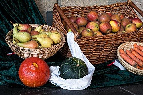 - Quality Prints - Laminated 36x24 Vibrant Durable Photo Poster - Fruit Vegetables Thanksgiving Harvest Pumpkin Pears Apple Baskets Fruit Baskets