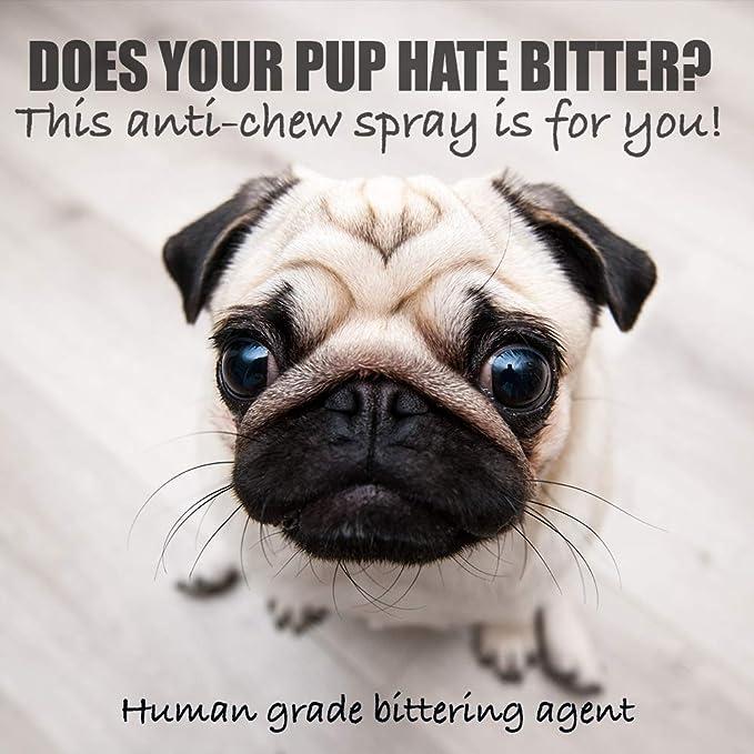 Spray para Evitar la Masticación del Perro - evita la masticación no deseada - seguro para las mascotas - herramienta de entrenamiento eficaz para cachorros ...