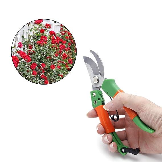 Haushalt Bonsai Gartenschere aus Kohlenstoffstahl Werkzeuge Rryilong Anf/änger