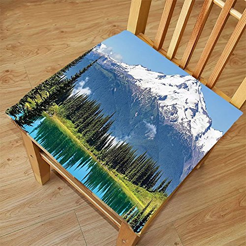 Nalahome Set of 2 Waterproof Cozy Seat Protector Cushion Americana Landscape Decor Glacier Peak in Washington Tree in Water Meadow Hiking Art Print Green Blue Printing Size 20x20inch