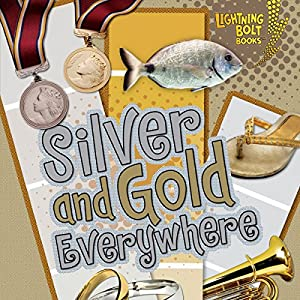 Silver and Gold Everywhere Audiobook
