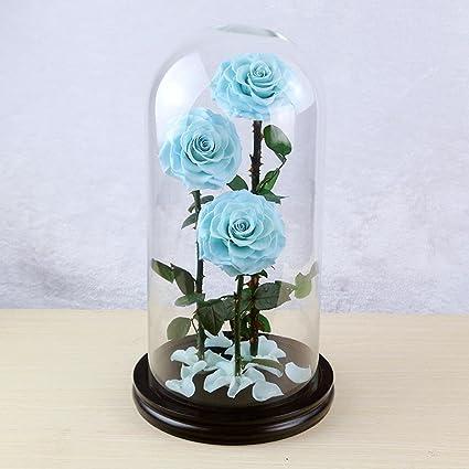 Wmshpeds Eterna flor color de rosa de regalo de Navidad-Mega vidrio día de San