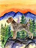 Caroline's Treasures SS8226CHF German Wirehaired Pointer Flag Canvas, Large, Multicolor