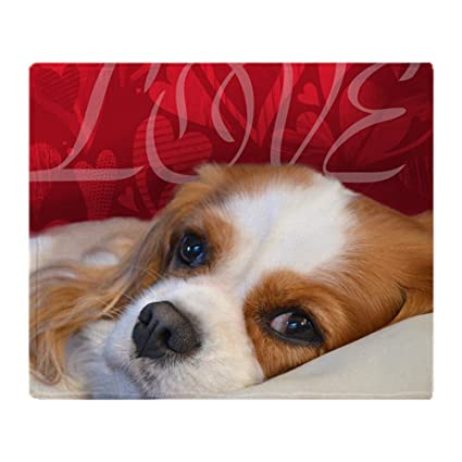 c3118596ac6b Amazon.com: CafePress Cavalier King Charles Spaniel Love Soft Fleece ...