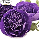 Large Paper Flower Decorations 8'' of Lavender Crepe Paper Flower Handcrafted Flowers Wall Hanging Classic Giant Flower for Wedding Backdrop Baby Shower Nursery Wall Decor Archway Decor(Set of 3)