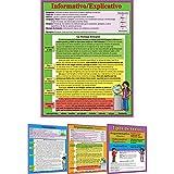 Intermediate Writing Text Types Poster Set -Spanish