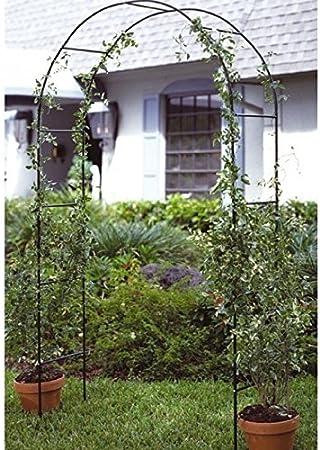Nuevo jardín Rose Arch Flor Metal celosía para plantas trepadoras apoyo Ivy Tall marco 2, 4 m: Amazon.es: Jardín