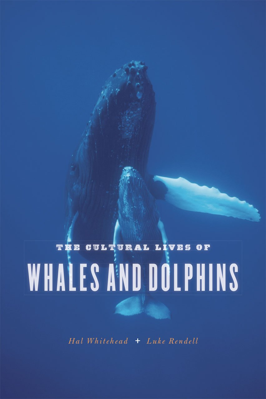 the-cultural-lives-of-whales-and-dolphins
