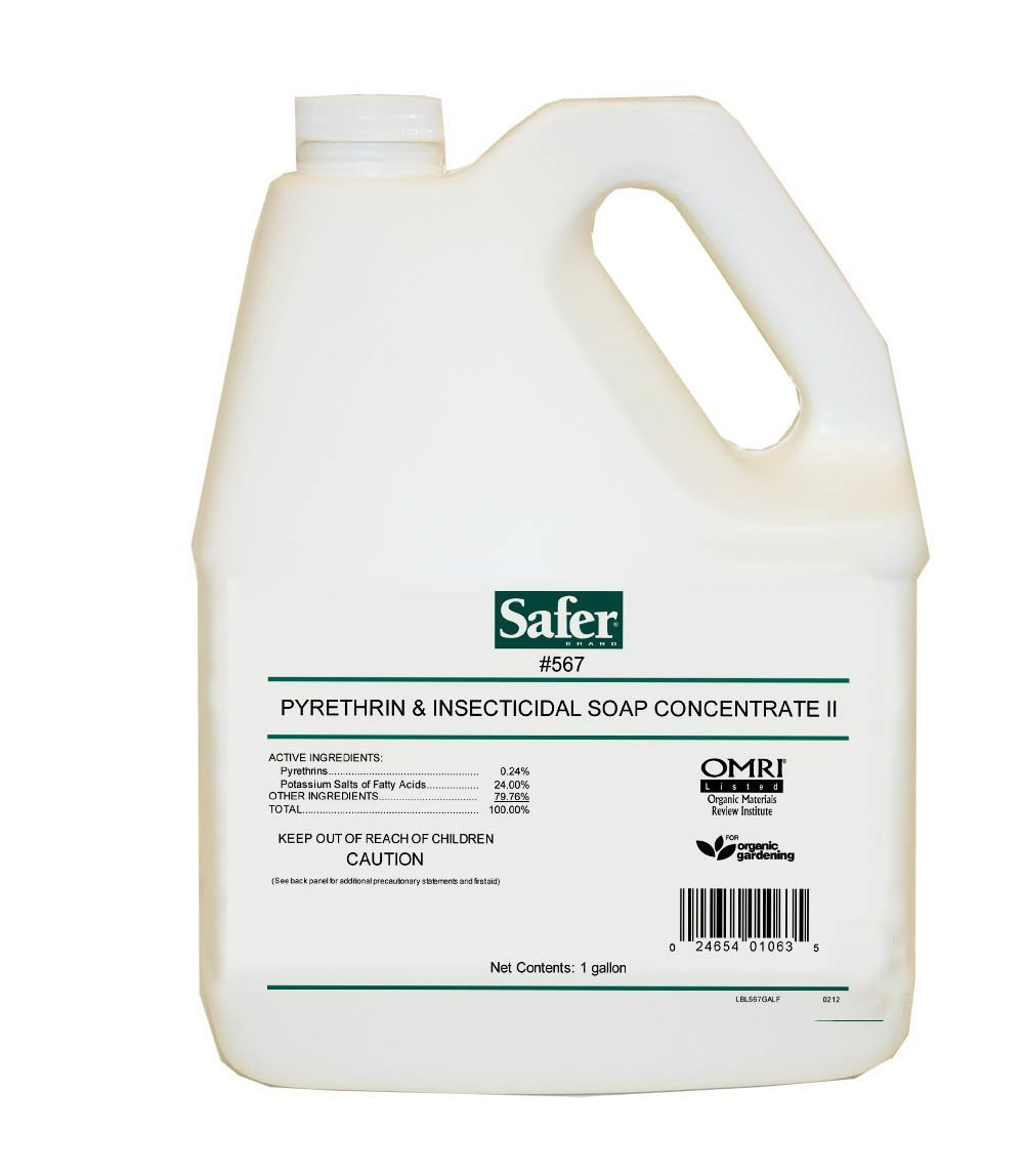 Safer Pyrethrin & Insecticidal Soap Concentrate, 1 Gallon by Safer Brand (Image #1)
