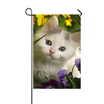 Amazon com : White Cat Double-Sided Printed Garden House