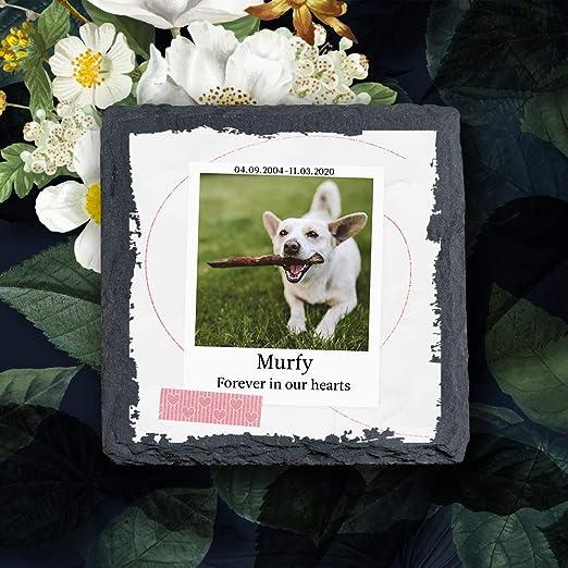 YPH - Placa conmemorativa personalizada con foto para mascotas, gatos y perros, marco de piedra, tamaño 100 x 100 mm: Amazon.es: Productos para mascotas