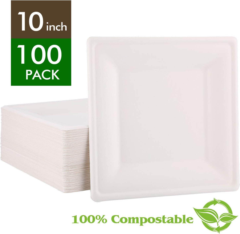 [100-COUNT] FOCUS LINE 10-Inch Compostable Square Plates, Biodegradable Bagasse Disposable Dessert Plates – White Eco Friendly 100% Natural Sugarcane Plates