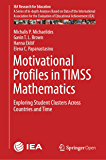 Motivational Profiles in TIMSS Mathematics: Exploring Student Clusters Across Countries and Time (IEA Research for Education Book 7)