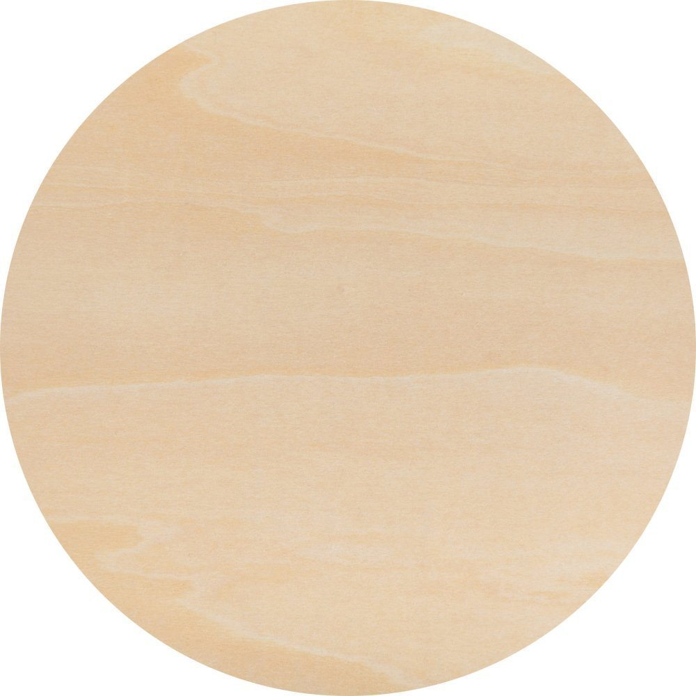 24 Inch Wood Circle Cutouts from Baltic Birch, Bag of 2 Unfinished Wood Crafting Circles, Blank Round Wood Sing by Woodpeckers