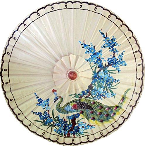 Painted Umbrellas Hand (Oriental-Decor Perching Peacock Hand Painted Umbrella 35 Inch)