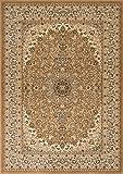 Cheap Traditional Area Rug Design Elegance 205 (10 Feet X 13 Feet, Beige)