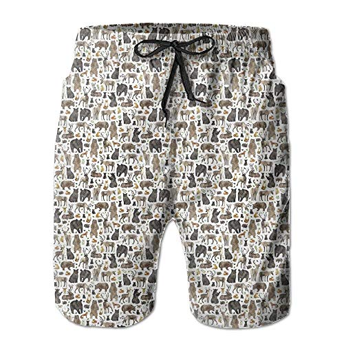 Woodland Animals Men's Swim Trunks Quick Dry Bathing Suits Summer Casual Surfing Beach Shorts
