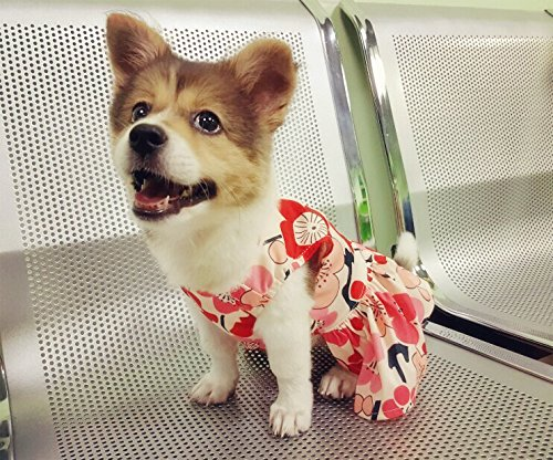 Pictures of CuteBone Dog Dress Dog Dresses For Small Red M 2