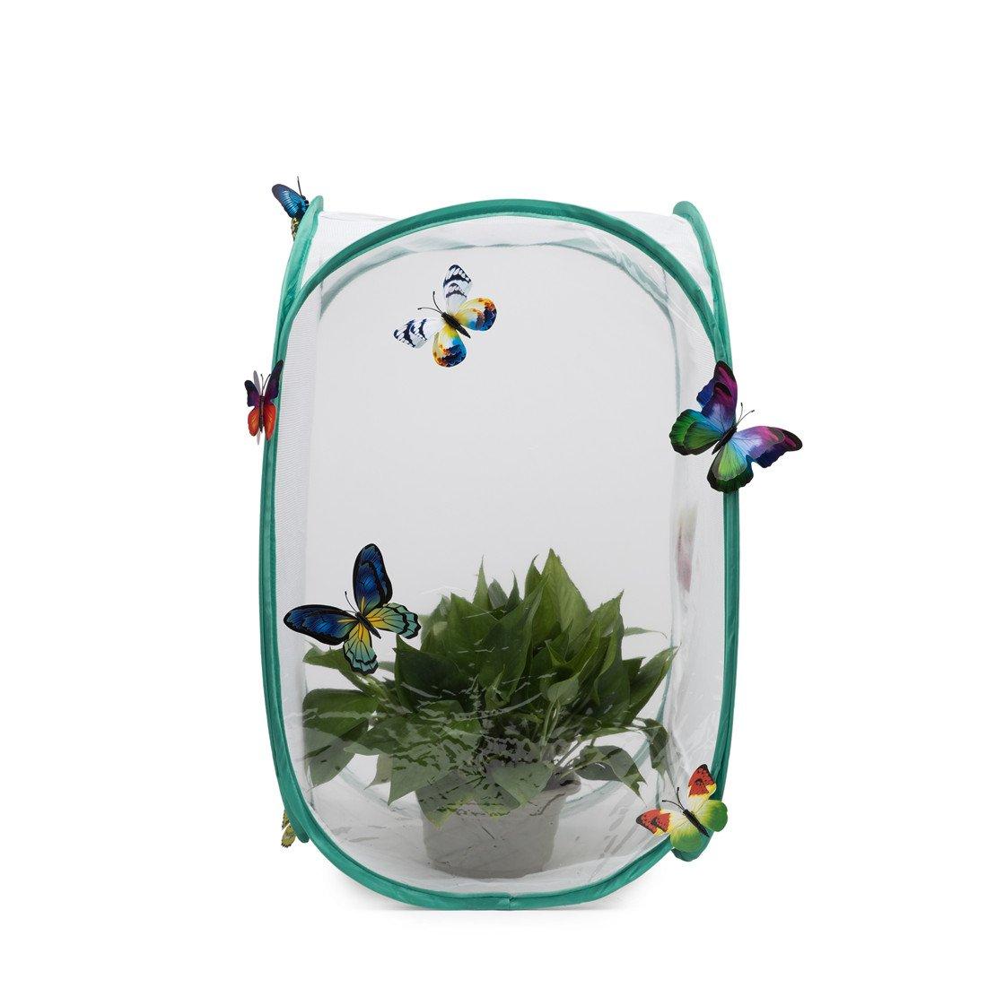 Hyindoor Gabbia per insetti Gabbia per farfalle Habitat Gabbia di protezione anti-pop-up pieghevole per terrari 40 x 40 x 60 cm