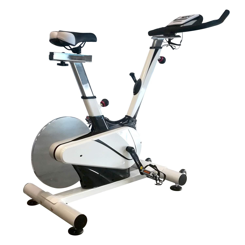 CloverFitness Clover Design Pro 2.1 Bicicleta de Ciclo Indoor ...